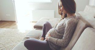 hamile besinleri