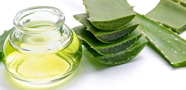 aloevera bitki faydaları