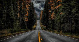 rüyada yolculuk anlamı