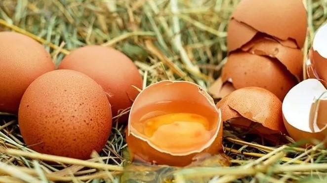 rüyada pişmiş yumurta anlamı nedir