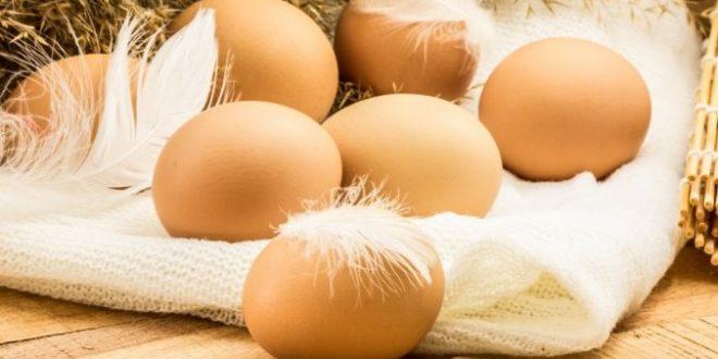 rüyada yumurta görmek anlamı