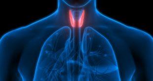 tiroid bozukluğu